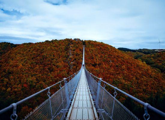 Psicoterapia come ponte